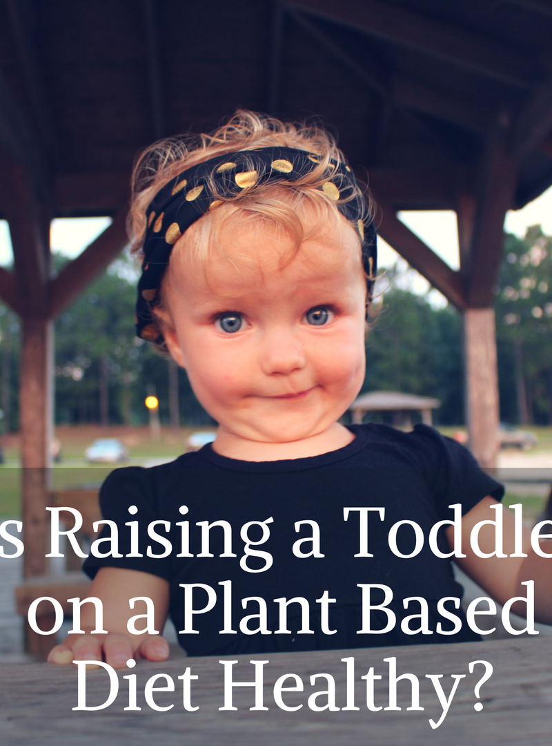 Is Raising a Toddler on a Plant Based Diet Healthy?